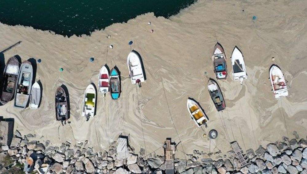 Marmara Denizinin Kâbusu: Müsilaj